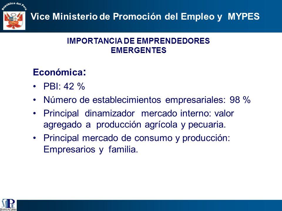 Vice Ministerio de Promoción del Empleo y MYPES 2.Estrategia Segunda: Promover la competitividad de las MYPES, así como su formalización. Necesidades