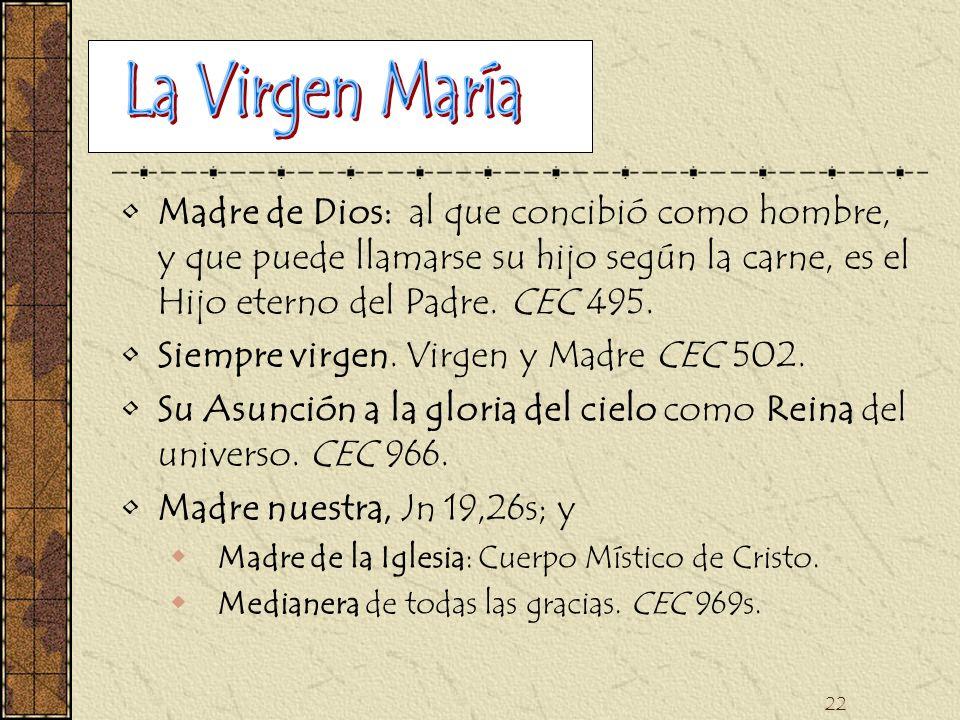 22 Madre de Dios: al que concibió como hombre, y que puede llamarse su hijo según la carne, es el Hijo eterno del Padre. CEC 495. Siempre virgen. Virg