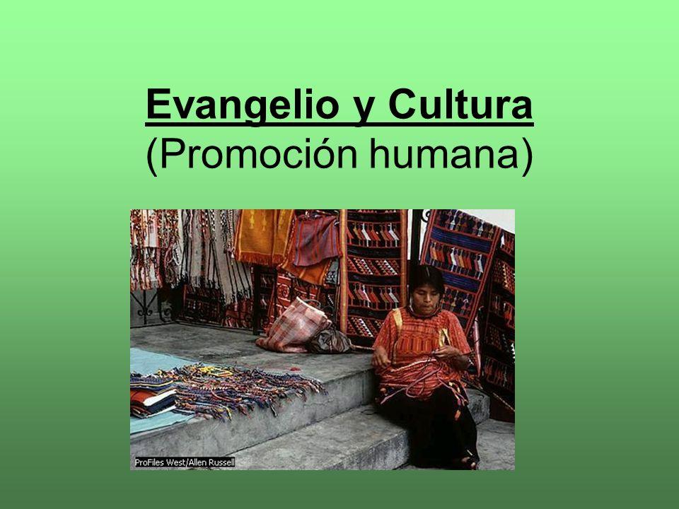 LEER (Juan Pablo II, Mensaje a los ind í genas, 12. 10. 92, 2) : LEER:...la Iglesia, que con sus religiosos, sacerdotes y obispos ha estado siempre al