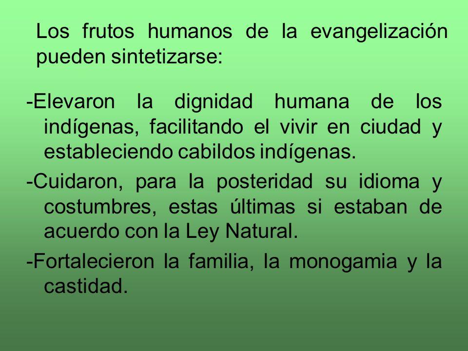 Evangelio y Cultura (Promoción humana)