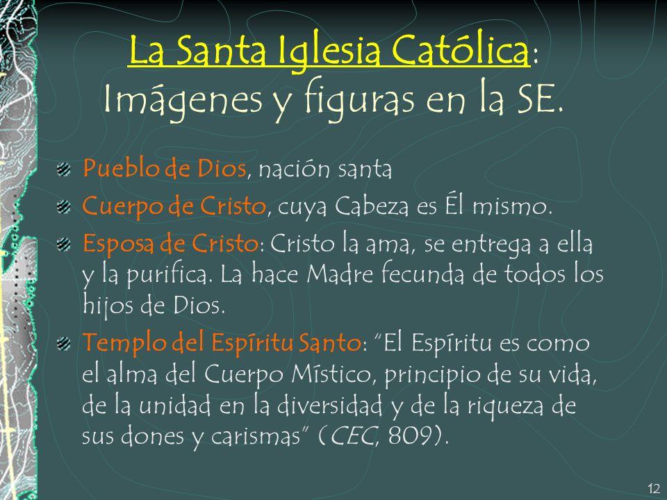 12 La Santa Iglesia Católica: Imágenes y figuras en la SE. Pueblo de Dios, nación santa Cuerpo de Cristo, cuya Cabeza es Él mismo. Esposa de Cristo: C