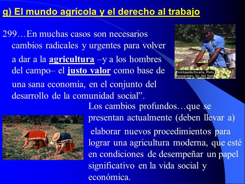 g) El mundo agrícola y el derecho al trabajo 299…En muchas casos son necesarios cambios radicales y urgentes para volver a dar a la agricultura –y a los hombres del campo– el justo valor como base de una sana economía, en el conjunto del desarrollo de la comunidad social.