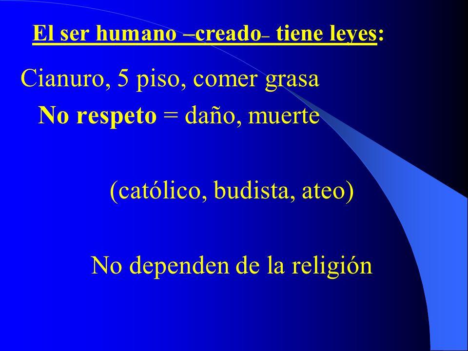 I. ECOLOGÍA SEXUAL 1. Noción Lo creado tiene leyes: carro, bosque, río -No respeto = Daño, destrucción, contaminación -Rev. Industrial = Avances pero.