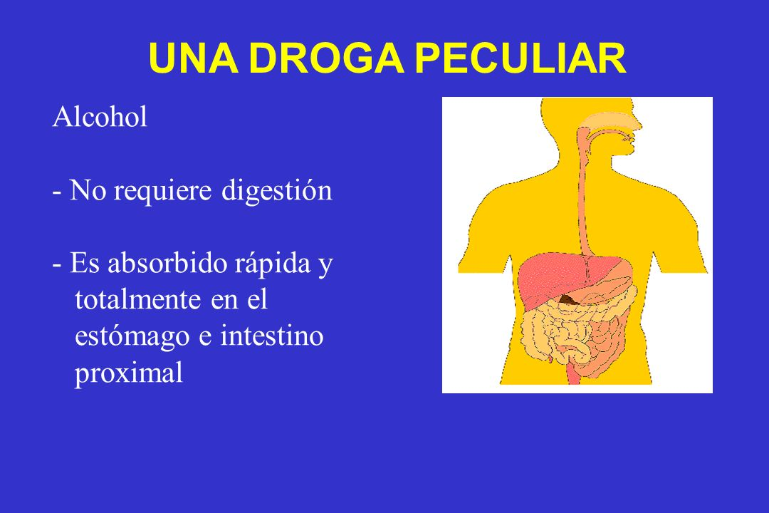 Alcohol - No requiere digestión - Es absorbido rápida y totalmente en el estómago e intestino proximal UNA DROGA PECULIAR