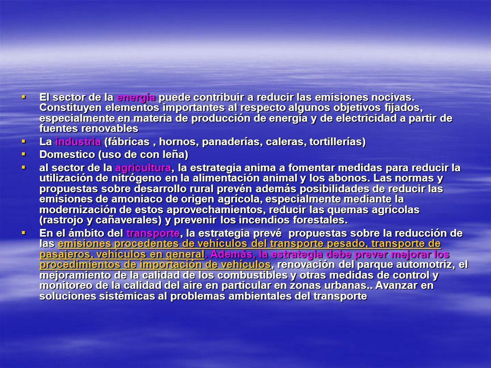 -Voluntad política y compromiso -Coordinación interinstitucional - Conciencia y participación pública - Uso de mecanismos regulatorios - Planes y gestión Por un aire más limpio Por un aire más limpio