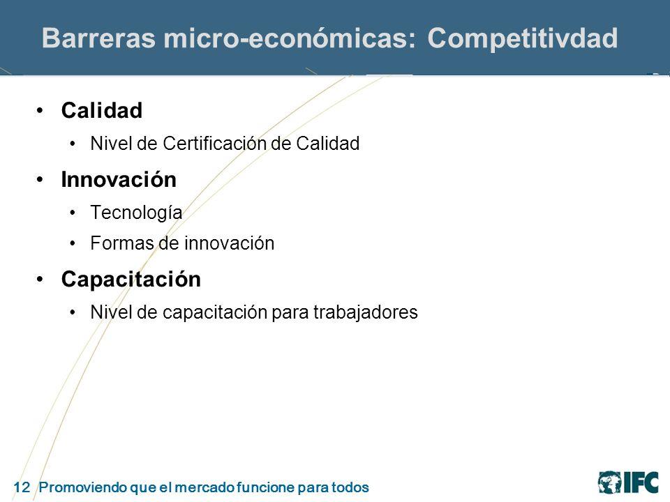 12 Promoviendo que el mercado funcione para todos Barreras micro-económicas: Competitivdad Calidad Nivel de Certificación de Calidad Innovación Tecnología Formas de innovación Capacitación Nivel de capacitación para trabajadores
