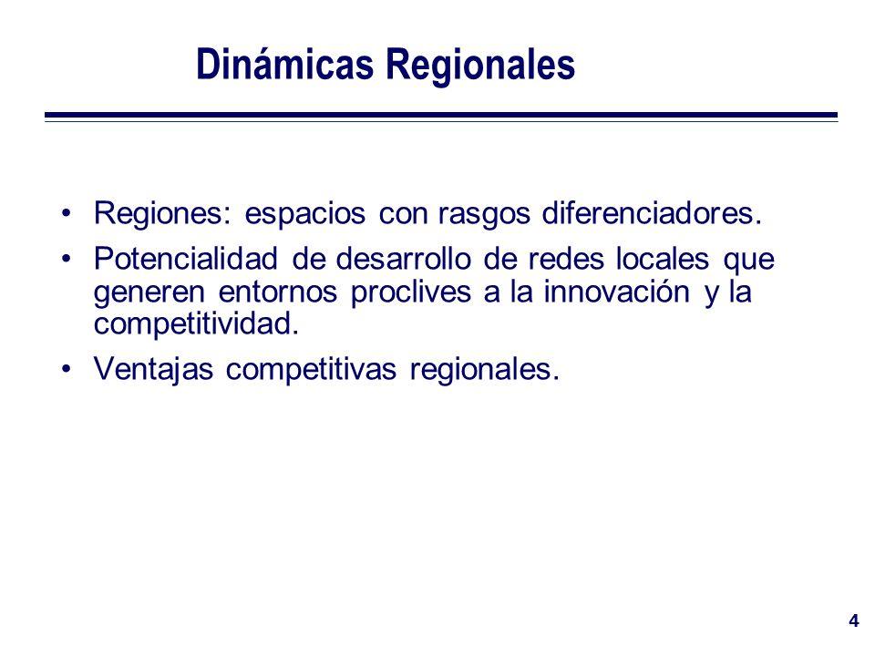 4 Dinámicas Regionales Regiones: espacios con rasgos diferenciadores. Potencialidad de desarrollo de redes locales que generen entornos proclives a la