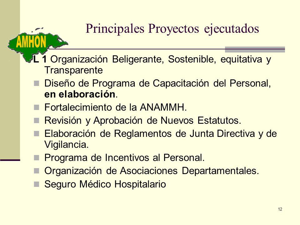 12 Principales Proyectos ejecutados L 1 Organización Beligerante, Sostenible, equitativa y Transparente Diseño de Programa de Capacitación del Persona