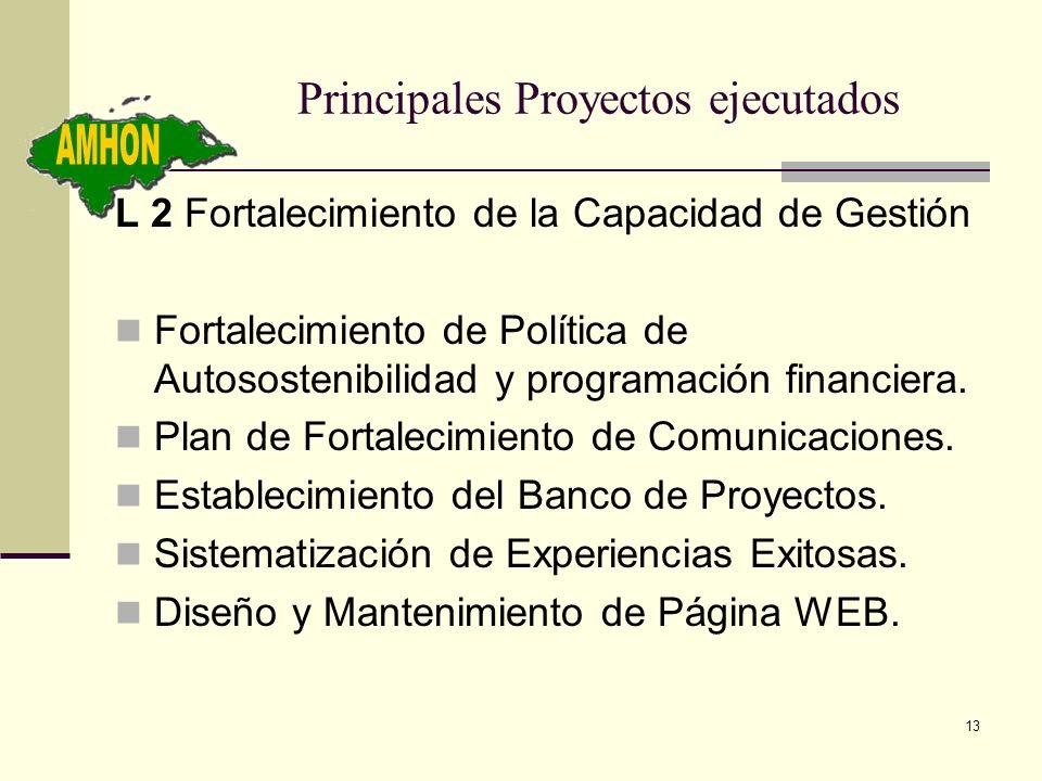 13 Principales Proyectos ejecutados L 2 Fortalecimiento de la Capacidad de Gestión Fortalecimiento de Política de Autosostenibilidad y programación fi
