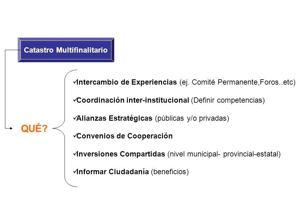 QUÉ? Intercambio de Experiencias (ej. Comité Permanente,Foros..etc) Coordinación inter-institucional (Definir competencias) Alianzas Estratégicas (púb