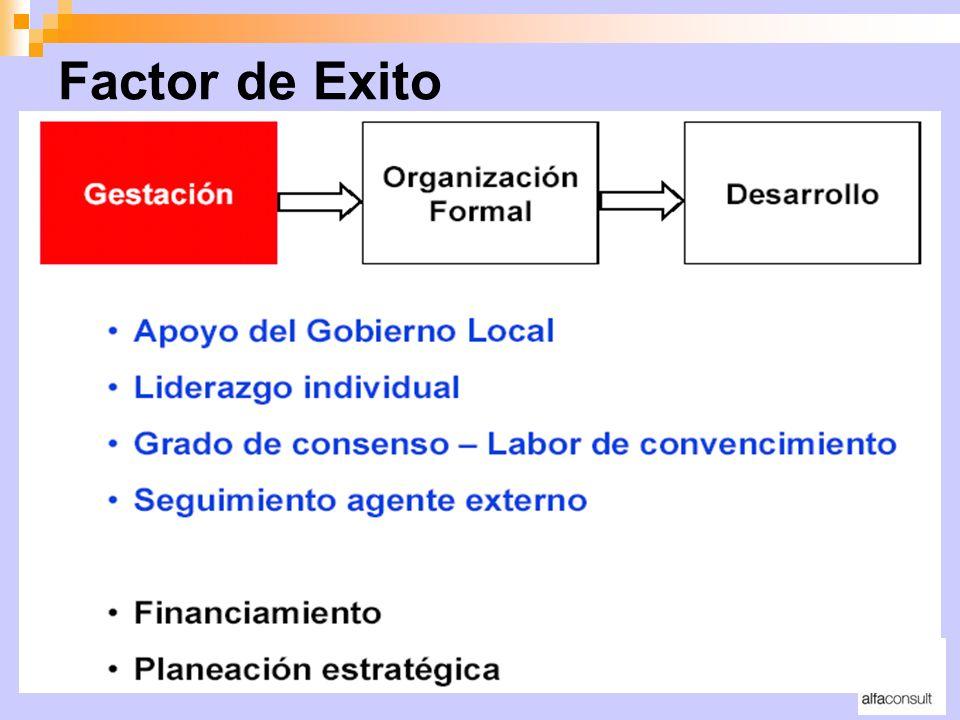 Factor de Exito