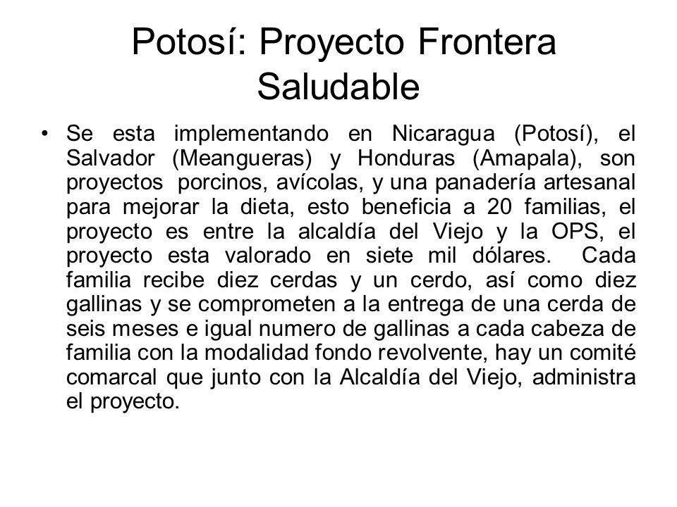 Potosí: Proyecto Frontera Saludable Se esta implementando en Nicaragua (Potosí), el Salvador (Meangueras) y Honduras (Amapala), son proyectos porcinos