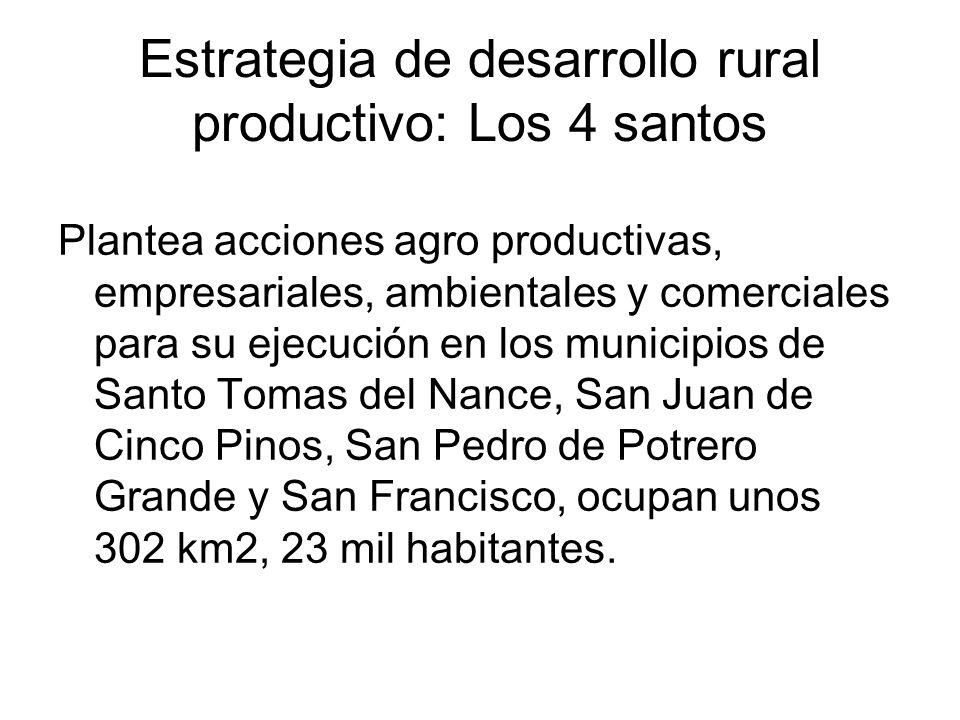 Estrategia de desarrollo rural productivo: Los 4 santos Plantea acciones agro productivas, empresariales, ambientales y comerciales para su ejecución
