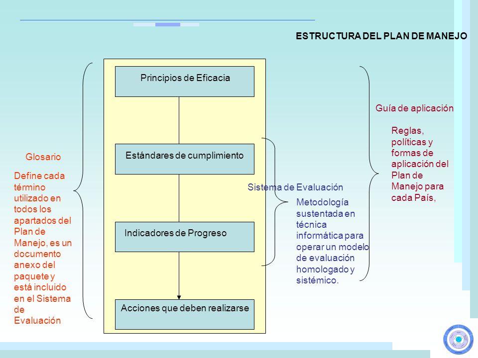 Acciones que deben realizarse Glosario Sistema de Evaluación Guía de aplicación Indicadores de Progreso Estándares de cumplimiento Principios de Efica