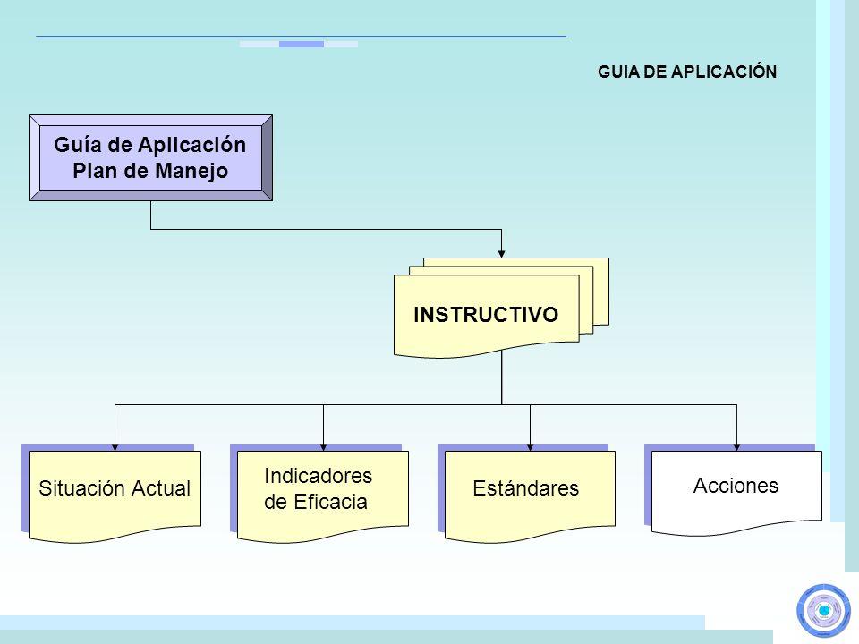 Guía de Aplicación Plan de Manejo INSTRUCTIVO Situación Actual Indicadores de Eficacia Indicadores de Eficacia Estándares Acciones GUIA DE APLICACIÓN