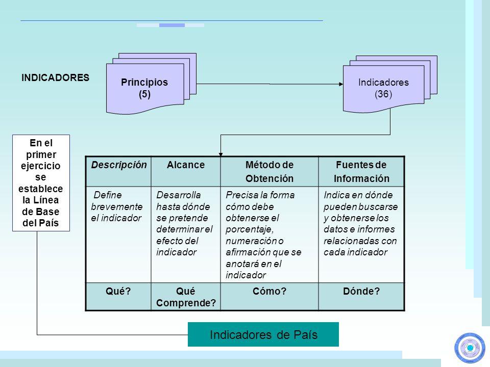 DescripciónAlcanceMétodo de Obtención Fuentes de Información Define brevemente el indicador Desarrolla hasta dónde se pretende determinar el efecto de
