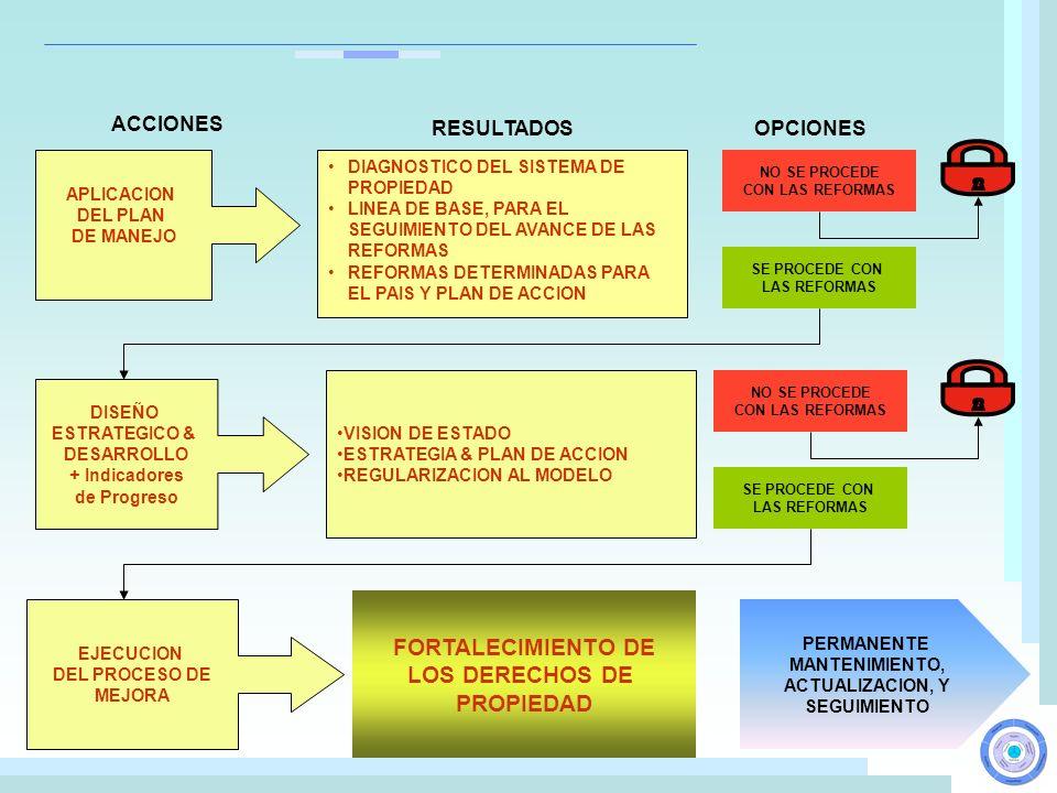 APLICACION DEL PLAN DE MANEJO NO SE PROCEDE CON LAS REFORMAS SE PROCEDE CON LAS REFORMAS DISEÑO ESTRATEGICO & DESARROLLO + Indicadores de Progreso VIS