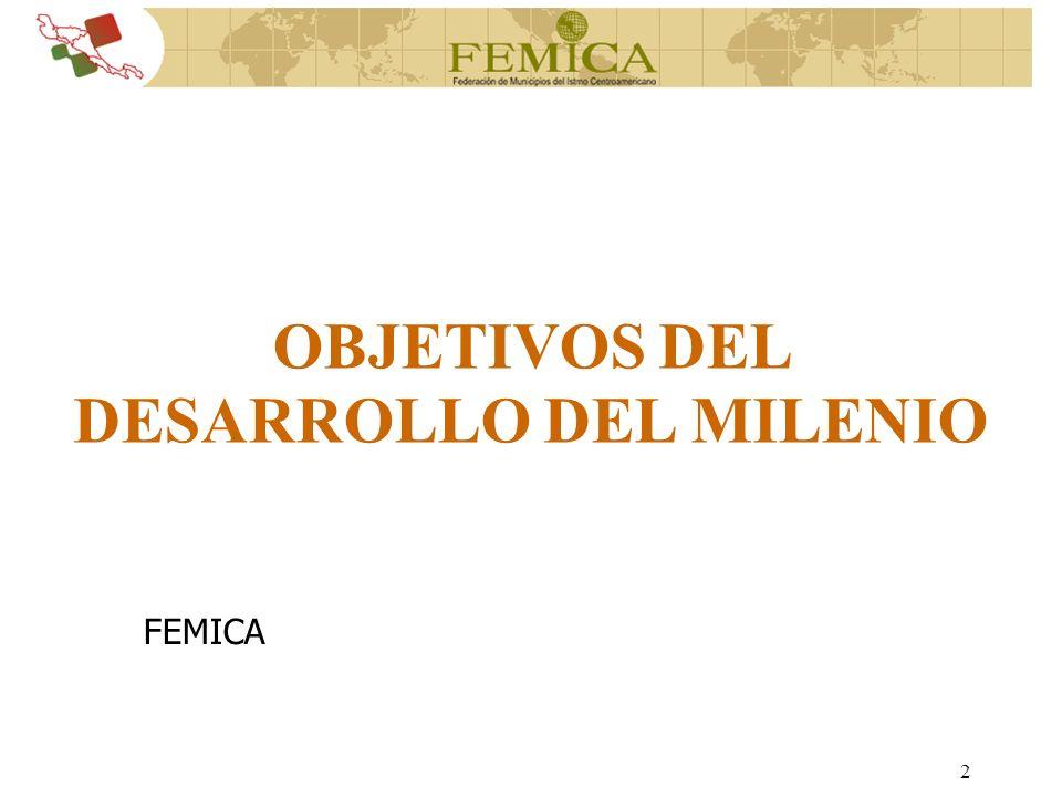 2 FEMICA OBJETIVOS DEL DESARROLLO DEL MILENIO