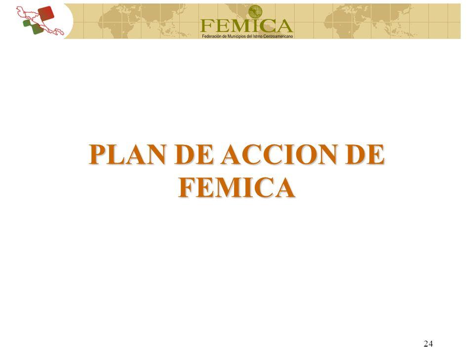 24 PLAN DE ACCION DE FEMICA
