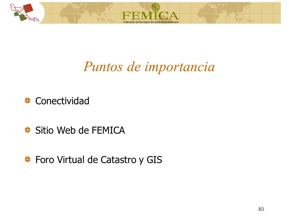 80 Conectividad Sitio Web de FEMICA Foro Virtual de Catastro y GIS Puntos de importancia