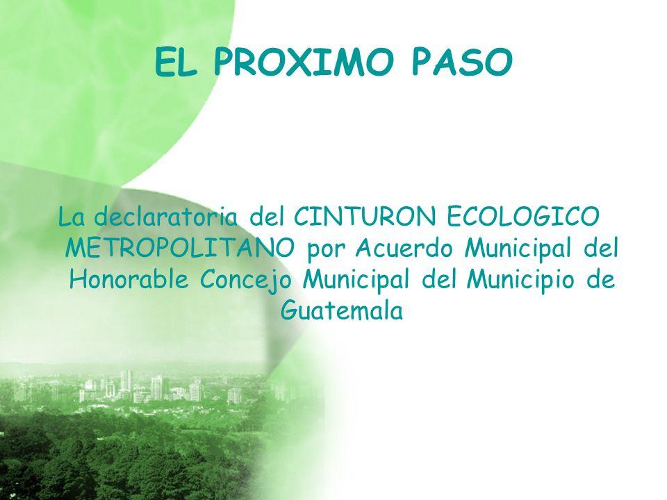 EL PROXIMO PASO La declaratoria del CINTURON ECOLOGICO METROPOLITANO por Acuerdo Municipal del Honorable Concejo Municipal del Municipio de Guatemala
