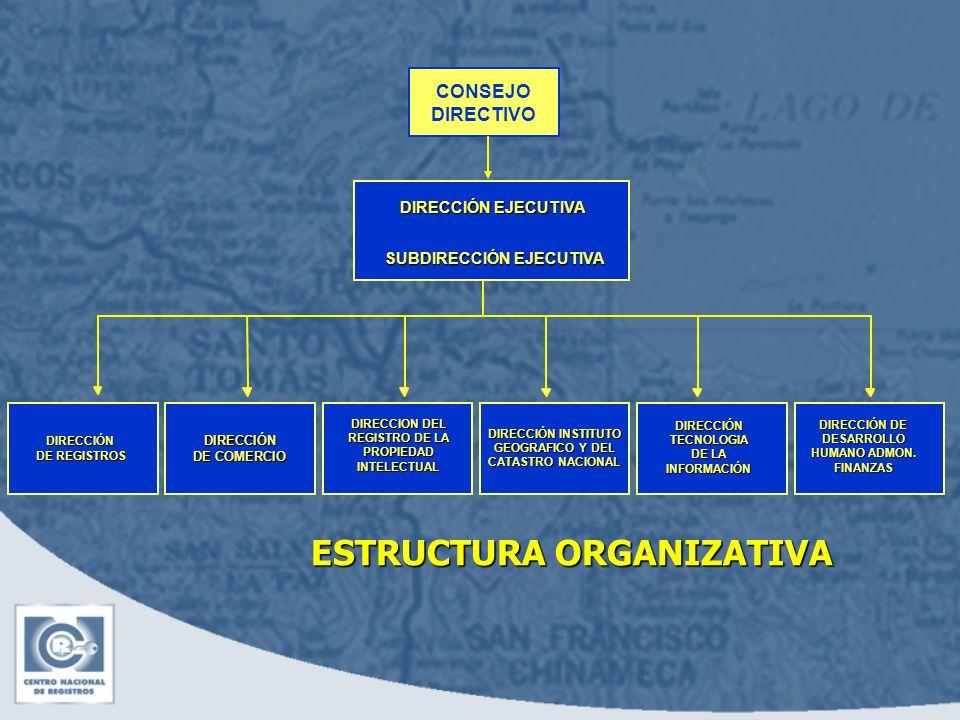 ESTRUCTURA ORGANIZATIVA CONSEJO DIRECTIVO DIRECCIÓN EJECUTIVA SUBDIRECCIÓN EJECUTIVA DIRECCIÓN INSTITUTO GEOGRAFICO Y DEL CATASTRO NACIONAL DIRECCIÓN