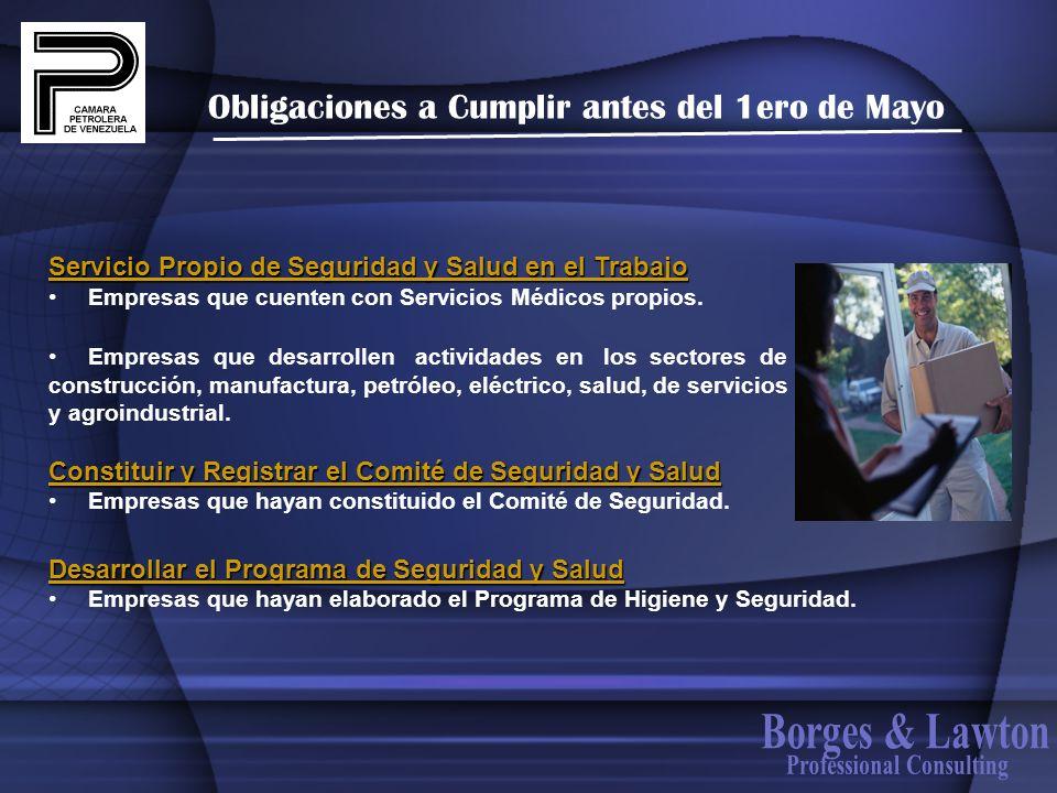 Obligaciones a Cumplir antes del 1ero de Mayo Servicio Propio de Seguridad y Salud en el Trabajo Empresas que cuenten con Servicios Médicos propios. E