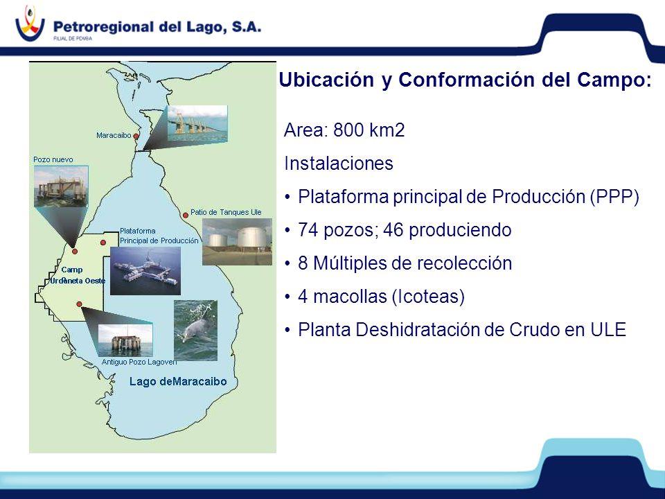 Area: 800 km2 Instalaciones Plataforma principal de Producción (PPP) 74 pozos; 46 produciendo 8 Múltiples de recolección 4 macollas (Icoteas) Planta D