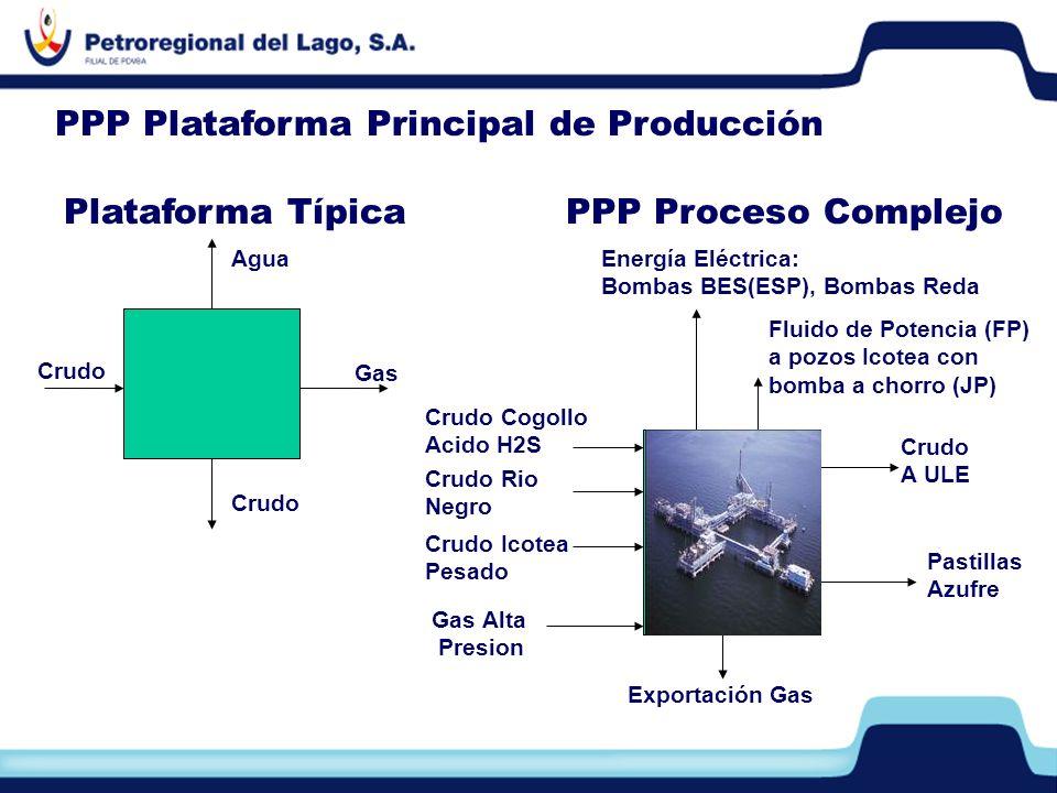 Crudo Rio Negro Crudo Cogollo Acido H2S Crudo Icotea Pesado Gas Alta Presion Crudo A ULE Exportación Gas Pastillas Azufre Energía Eléctrica: Bombas BE