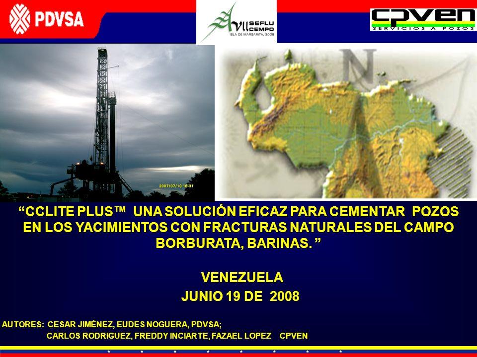 VENEZUELA JUNIO 19 DE 2008 AUTORES: CESAR JIMÉNEZ, EUDES NOGUERA, PDVSA; CARLOS RODRIGUEZ, FREDDY INCIARTE, FAZAEL LOPEZ CPVEN CCLITE PLUS UNA SOLUCIÓ