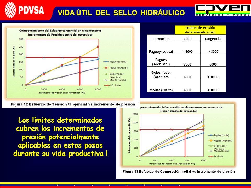 VIDA ÚTIL DEL SELLO HIDRÁULICO Límites de Presión determinados (psi) FormaciónRadialTangencial Paguey (Lutita)> 8000 Paguey (Arenisca))75006000 Gobern
