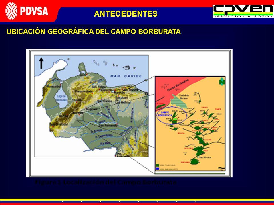 UBICACIÓN GEOGRÁFICA DEL CAMPO BORBURATA ANTECEDENTES