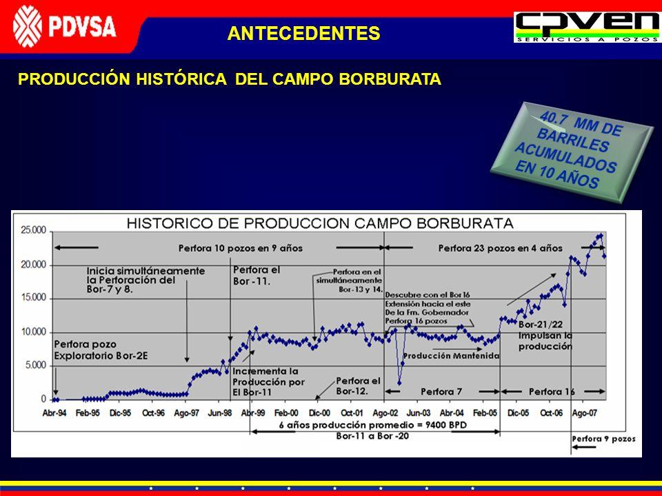 PRODUCCIÓN HISTÓRICA DEL CAMPO BORBURATA ANTECEDENTES