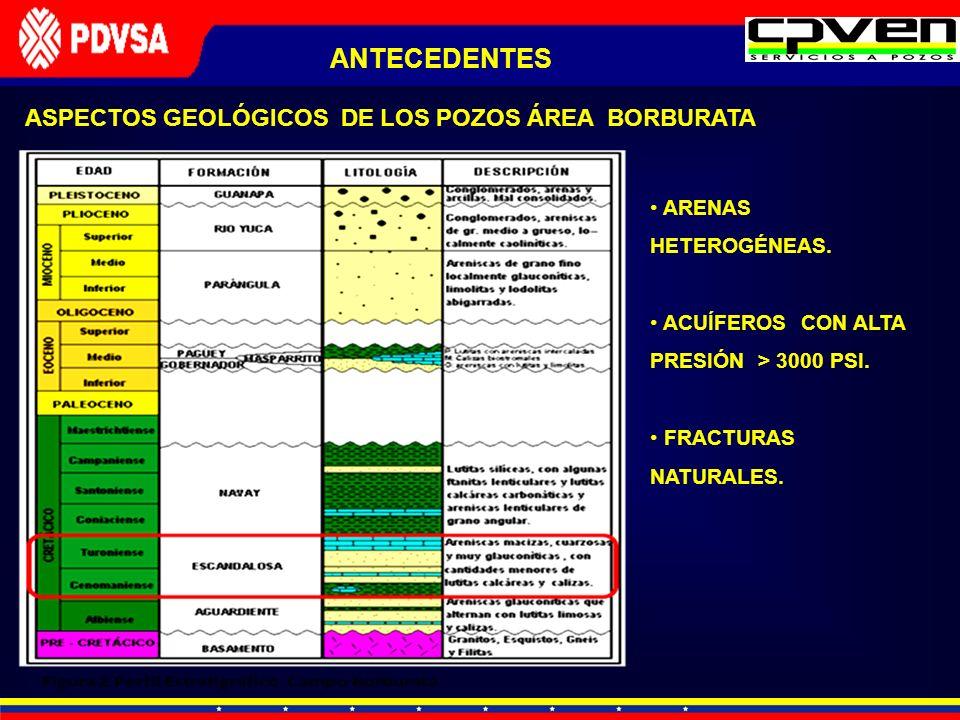 ASPECTOS GEOLÓGICOS DE LOS POZOS ÁREA BORBURATA ARENAS HETEROGÉNEAS. ACUÍFEROS CON ALTA PRESIÓN > 3000 PSI. FRACTURAS NATURALES. ANTECEDENTES