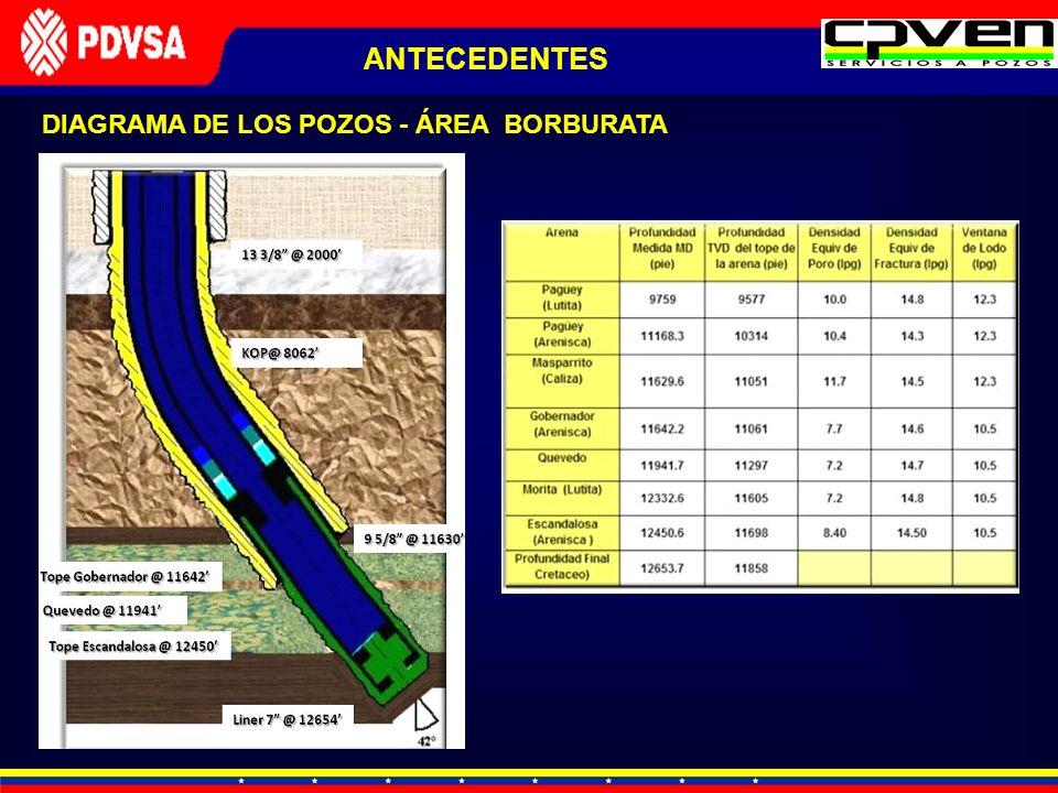 DIAGRAMA DE LOS POZOS - ÁREA BORBURATA ANTECEDENTES