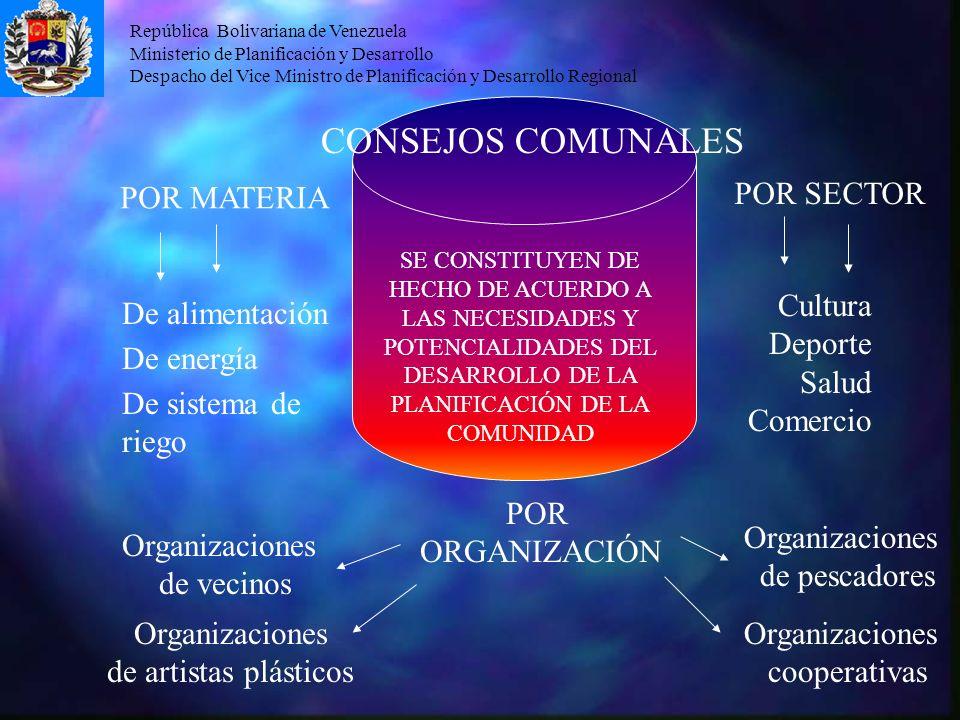 República Bolivariana de Venezuela Ministerio de Planificación y Desarrollo Despacho del Vice Ministro de Planificación y Desarrollo Regional CONSEJOS