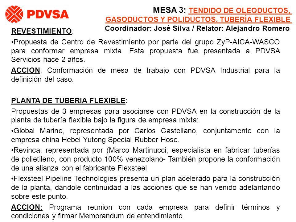 REVESTIMIENTO: Propuesta de Centro de Revestimiento por parte del grupo ZyP-AICA-WASCO para conformar empresa mixta. Esta propuesta fue presentada a P