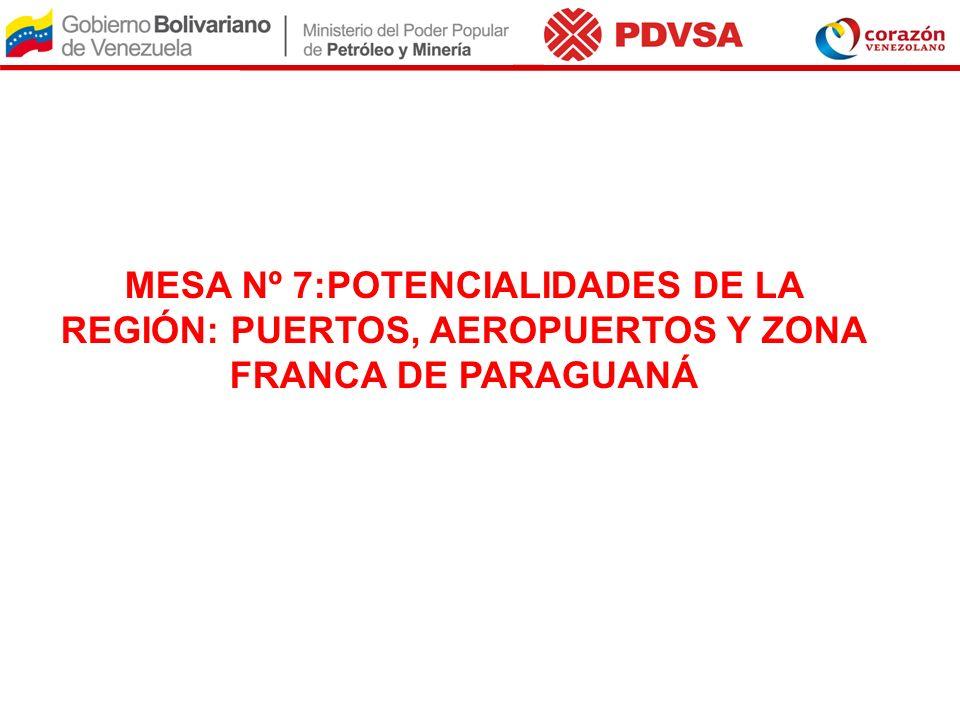 MESA Nº 7:POTENCIALIDADES DE LA REGIÓN: PUERTOS, AEROPUERTOS Y ZONA FRANCA DE PARAGUANÁ