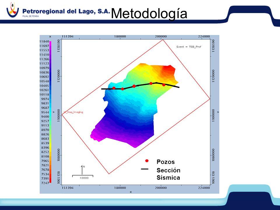 Metodologí a Pozos Sección Sísmica Metodología