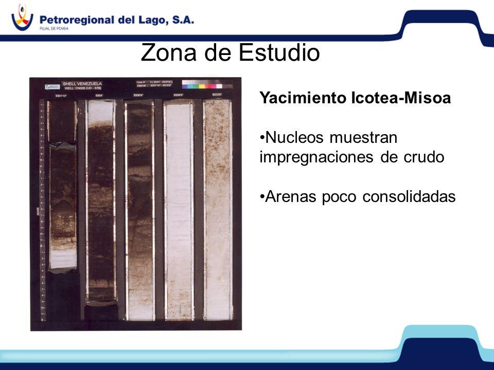 Zona de Estudio Yacimiento Icotea-Misoa Nucleos muestran impregnaciones de crudo Arenas poco consolidadas