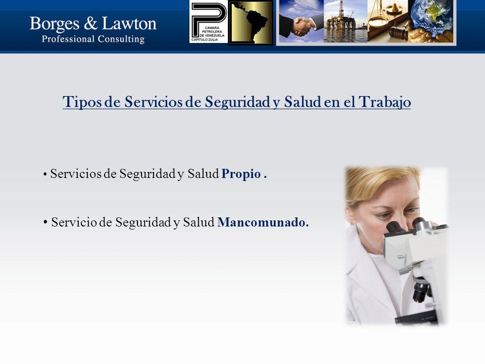 Tipos de Servicios de Seguridad y Salud en el Trabajo Servicios de Seguridad y Salud Propio.