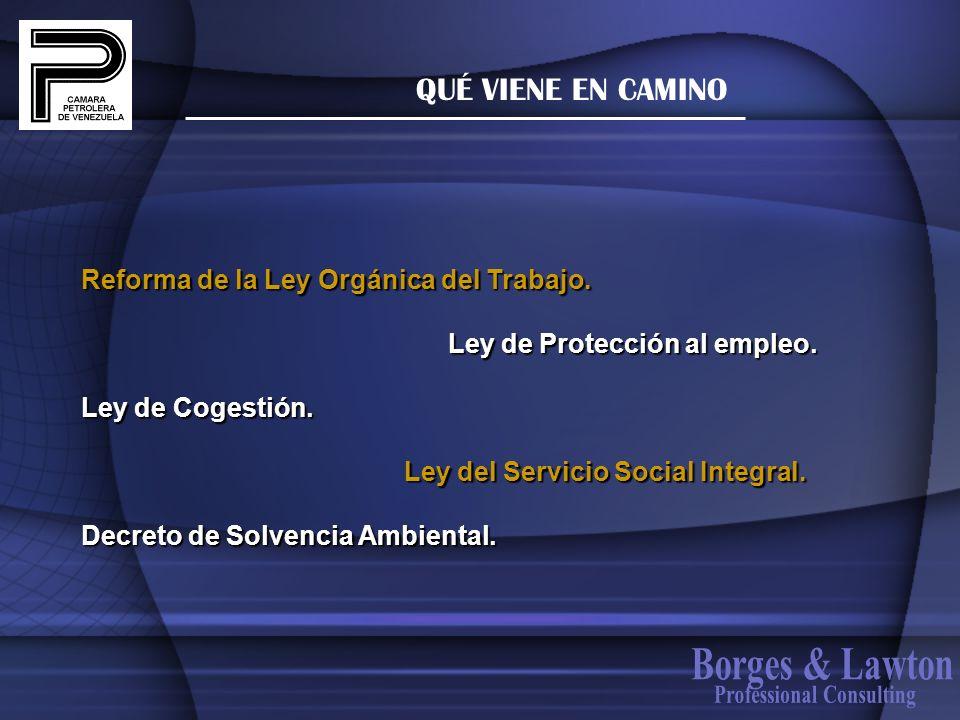 QUÉ VIENE EN CAMINO Reforma de la Ley Orgánica del Trabajo. Ley de Protección al empleo. Ley de Protección al empleo. Ley de Cogestión. Ley del Servic