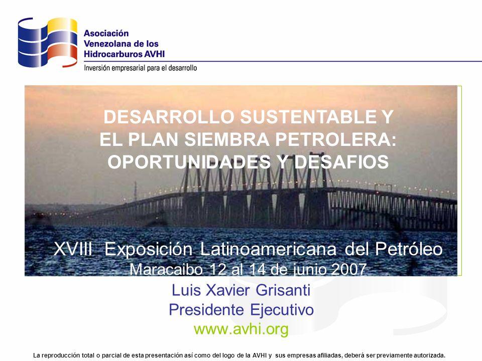 Luis Xavier Grisanti Presidente Ejecutivo www.avhi.org La reproducción total o parcial de esta presentación así como del logo de la AVHI y sus empresa