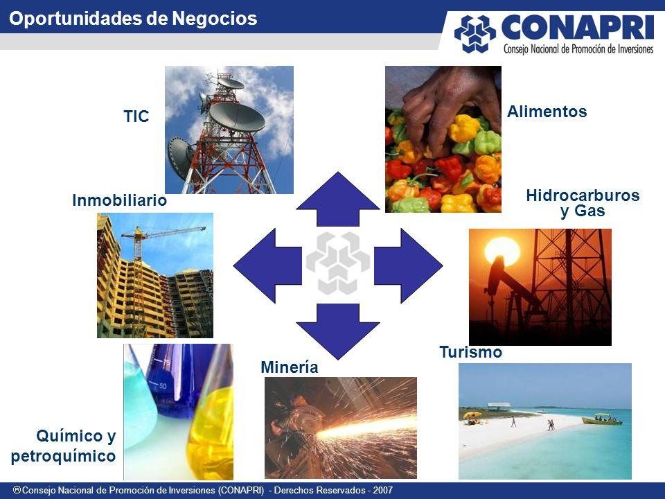 Consejo Nacional de Promoción de Inversiones (CONAPRI) - Derechos Reservados - 2007 Oportunidades de Negocios TIC Alimentos Hidrocarburos y Gas Inmobiliario Químico y petroquímico Minería Turismo