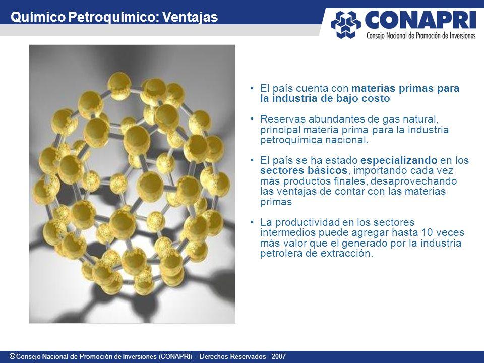 Consejo Nacional de Promoción de Inversiones (CONAPRI) - Derechos Reservados - 2007 El país cuenta con materias primas para la industria de bajo costo Reservas abundantes de gas natural, principal materia prima para la industria petroquímica nacional.