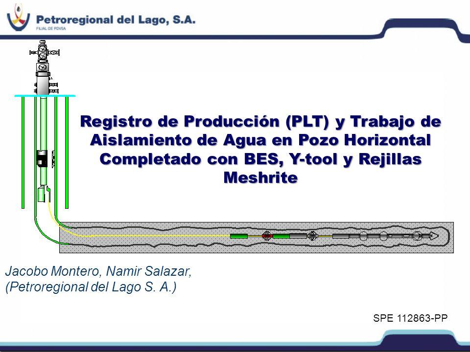 Introducción PERLACompañía: PERLA Icotea-MisoaIcotea-Misoa (Mioceno), arenas no consolidadas y con considerables reservas de crudo pesado.