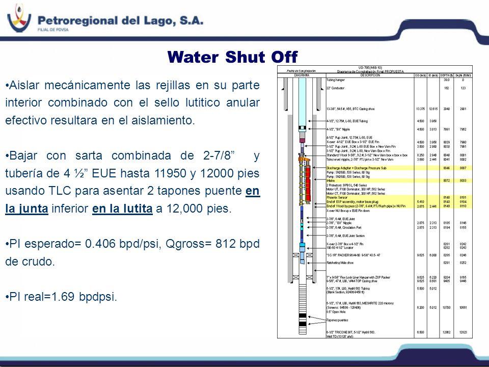 Conclusiones P Primer PLT corrido en un pozo horizontal de crudo pesado completado con y-tool y rejillas premium en hoyo abierto.