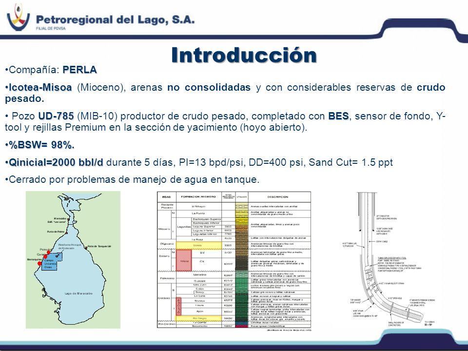 Introducción Análisis geológico y petrofísico de registros de hoyo abierto (LWD):Análisis geológico y petrofísico de registros de hoyo abierto (LWD): indicaron marcador estratigráfico no perforado anteriormente.