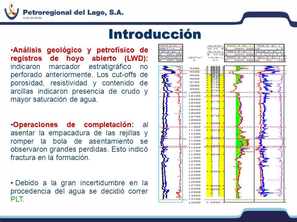 Consideraciones de Planificación y Riesgo Realizar el registro con un set de herramientas PLT en toda la sección de producción (discriminar fases y determinar hold-up) para determinar el punto exacto de entrada de agua.