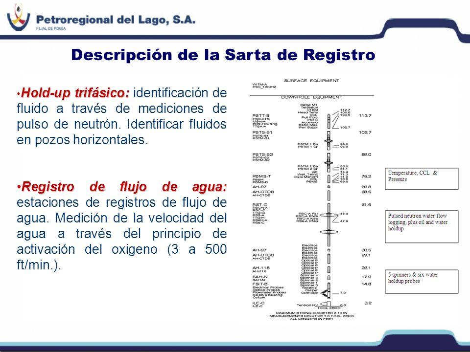 Descripción de la Sarta de Registro Múltiples spinners y probetas:Múltiples spinners y probetas: set de varios spinners miden la velocidad y detectan diferentes fases.